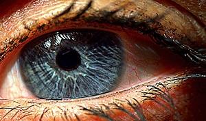 Crean retina artificial en Israel